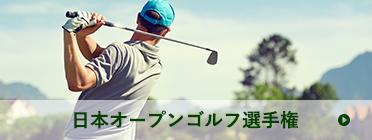 日本オープンゴルフ選手権 | ゴルフボールを打つ人物の後ろ姿