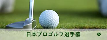 日本プロゴルフ選手権 | ゴルフボールとクラブの写真